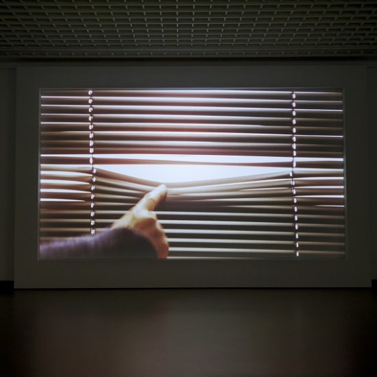 Выставка Марике ван Вармердам «Время идет» в рамках фестиваля «Дягилев. P.S.» 2014