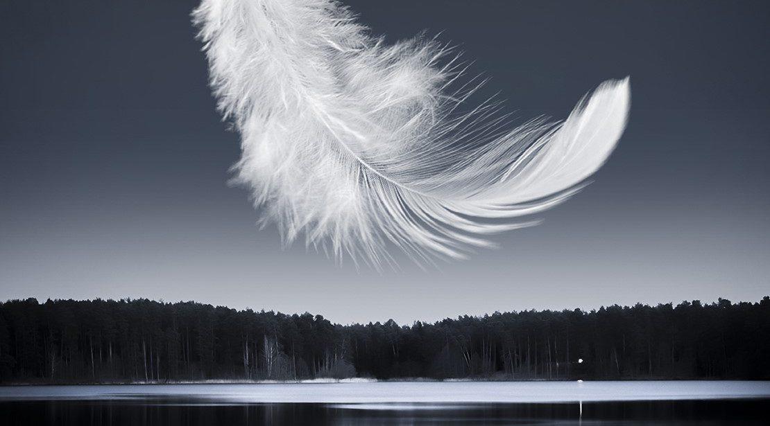 """BALLET PRELJOCAJ """"Swan Lake"""""""
